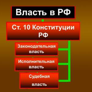 Органы власти Павловска