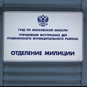 Отделения полиции Павловска
